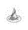 mystical witch hat with flowers leaves and stars vector image vector image