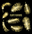 realistic fluffy feathers falling twirled plumage vector image vector image