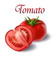 vegetable tomato fresh tomato white background vec vector image vector image