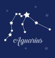 aquarius sign constellation icon on dark vector image
