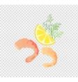Shrimps Variations vector image vector image