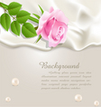 silk and rose background vector image vector image