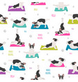yoga dogs poses and exercises french bulldog vector image vector image