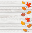 abstract background with falling autumn leaves vector image