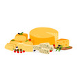 farm cheese set vector image vector image