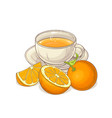 orange tea vector image vector image