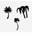 palm trees icon set isolated on transparent vector image vector image