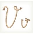 Rope alphabet Letter V vector image vector image