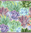 seamless pattern with high detail succulent vector image vector image