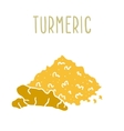 Turmeric powder and root vector image vector image