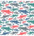 Shark seamless pattern vector image