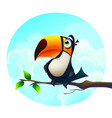 background a funny parrot vector image vector image