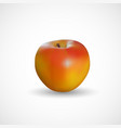 realistic apple on a white background vector image