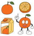 set of orange vector image vector image