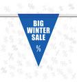 big winter sale icon in blue vector image