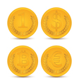 Various coins vector image