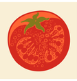 Abstract tomato drawing vector image vector image