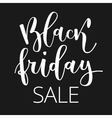 Black friday hand written inscription vector image vector image