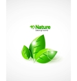 but i rarely do custom worksnature background vector image vector image