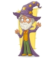 Cartoon old bearded wizard in big hat vector image vector image