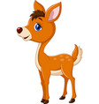 happy baby deer cartoon posing on isolated