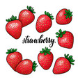 set beautiful cartoon red strawberry vector image vector image