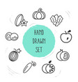 set of fruit icons line style symbols with vector image vector image