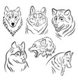 set portraits wolves collection wolf vector image