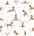 yoga dogs poses and exercises great dane seamless vector image vector image