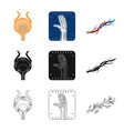 design body and human logo collection