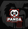 panda warriors abstract sign emblem or vector image vector image
