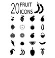 twenty fruit icons vector image