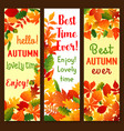 autumn fall leaves banners set vector image