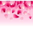 floral pink background decorated with rose petals vector image vector image