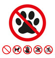 no pets sign on white background vector image vector image