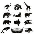 Set of animal icons vector image