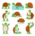 turtle cartoon seaturtle character swimming vector image