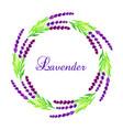 watercolor lavender frame vector image