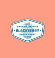 organic blackberry abstract sign symbol or vector image vector image