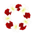 red rose and white lily flower christmas wreath vector image vector image