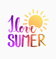 Summer sun vector image vector image