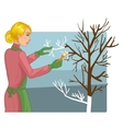 Woman is whitewashing of trees vector image vector image