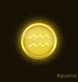 golden aquarius sign vector image