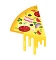 piece of pizza with cheese vector image vector image