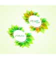 Set of round banners with spring leaves vector image