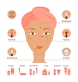 Types of acne pimples vector image vector image