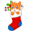 Cartoon animal cat in the sock christmas vector image