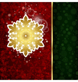 Christmas decoration and snowflakes vector image vector image