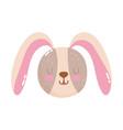 cute animals head rabbit cartoon isolated icon vector image vector image