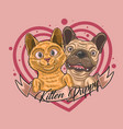 cute kitten and puppy love together vector image vector image